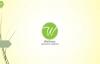 VITAMIN D NATURAL VITAMIN FOODS  BENEFITS OF WELLNESS