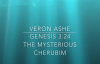 Veron Ashe- Preaches on Genesis 3_24- The Mysterious Cherubim (1).mp4