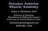 Serratus Anterior Muscle Anatomy  Everything You Need To Know  Dr. Nabil Ebraheim
