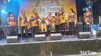 2014 African festival part 4