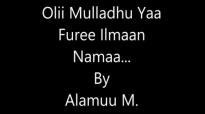 Olii Mulladhu Yaa Furee Ilma Namaa.mp4
