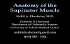 Anatomy Of The Supinator Muscle  Everything You Need To Know  Dr. Nabil Ebraheim