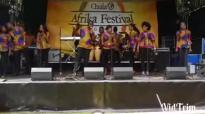 2014 african festival part 2
