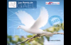 Les Remix De Gael Vol. 1 - Adorons l'éternel.flv