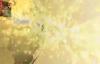 Ein Leben lang mit Gott - Lebe die Verheißungen Gottes! #1_7 von Katharine Siegling.flv