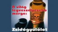 Norbert Lieth - Zsidogyűlölet. méreg.flv