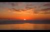 David E. Taylor - THE GREATEST MOVE OF GOD IS ABOUT TO HAPPEN pt.2.mp4
