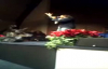 Nakkita Clegg-Foxx @ DamonGospel Stellar Awards Concert.flv