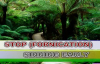 STOP (FORNICATION) SINNING BY BISHOP MIKE BAMIDELE.mp4