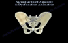 Sacroiliac Joint Dysfunction Anatomy, Animation  Everything You Need To Know  Dr. Nabil Ebraheim