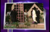 Powerful Different Messages ( Moment of Worship) by  by Pastor Chris Oyakhilome  8