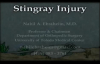 Stingray fish injury  Everything You Need To Know  Dr. Nabil Ebraheim