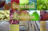 Cordyceps Mushroom Benefits as an Energy Tonic