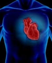 Benefits of herbs-Cardiovascular Blend